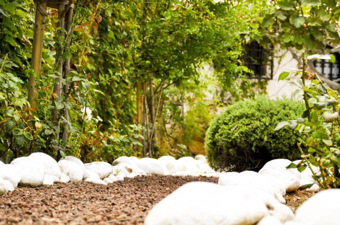 Jardiner a ecol gica ecocan jardiner a for Jardineria ecologica